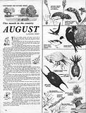 This Month in the Country: August