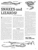 Animal Families: Snakes and Lizards!