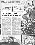 Animals –  Man's Inspiration: Getting Lost  –  Nature's Way!