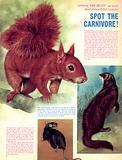 Rare Breeds: Spot the Carnivore!