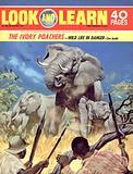 Ivory Poachers