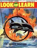 Dolphins jump through a burning hoop
