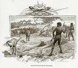 Natives Kangaroo hunting
