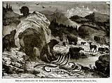 Ideal Landscape of the Pleistocene Period (Age of Man)