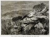 View of Mount Wilson, in the Blue Mountains, New South Wales