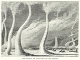 The Simoom, or Sandstorm of the Desert