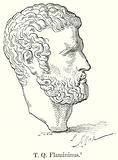 T.Q. Flamininus