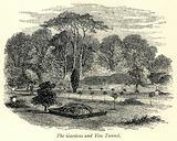 The Gardens and Yew Tunnel