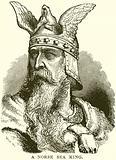 A Norse Sea King