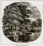Magna Charta Island