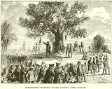 Indignation Meeting under Liberty Tree, Boston