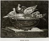 Mosaic Doves