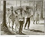 Negroes returning from Work