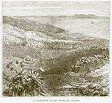 A Plantation in the South Sea Islands