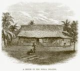 A House in the Tonga Islands