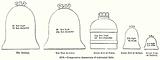 Comparative Dimensions of Celebrated Bells