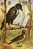 The Rook and the Lark