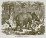 Hamstringing an Elephant