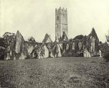 Adare Abbey, Co Limerick