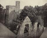 Selskar Abbey, Wexford