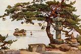 Pine-tree at Matsushima