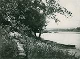 The Delaware River at Trenton