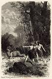 La chasse a l'epoque du renne