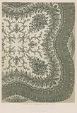 A Lace Shawl by W Vickers, Nottingham