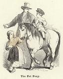 The Pet Pony