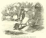 Hindoos Winnowing Corn with a Fan, Isaiah, xli, 6