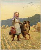 A young girl standing in a field with her hand on her collie dog