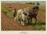 Ploughing by H Wheelwright