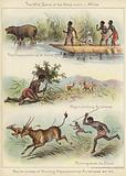 Native modes of hunting