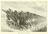 Maori war-dance, New Zealand