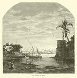 The Island of Roda