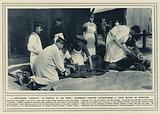 A four-legged casualty in hospital at the front, veterinary surgeons chloroforming a horse before an operation