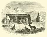 Fuegian Camp