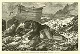 """Brave Allen Gardiner's body lying beside his boat"""