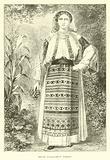 Young Wallachian woman