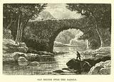 Old Bridge over the Dargle
