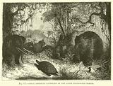 Ideal American Landscape of the Later Pleistocene Period