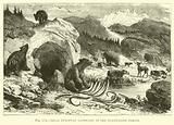 Ideal European Landscape in the Pleistocene Period