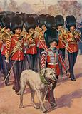 The Band and mascot of the Irish Guards wearing the shamrock on St Patrick's Day
