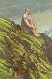 Don Quixote on the Sierra Morena doing penance
