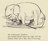 The Enthusiastic Elephant