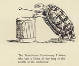 The Tumultuous Tom-tommy Tortoise
