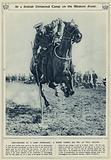 At a British divisional camp on the Western Front, tent-pegging at a camp gymkhana, a rider taking …
