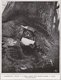 "A Peter-Pan-like ""dug-out"", a French soldier near Monastir reading a letter"
