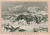 Discovery of a woolly mammoth beneath the ice