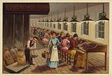 Cocoa processing plant